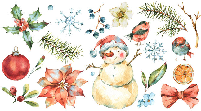 Winter Watercolor Christmas set of  Tree Branches, birds, holly, snowman, berries, poinsettia.