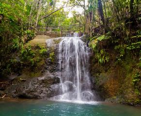 A hiking trail near a waterfall in Colo-i-Suva rain forest national park, nature reserve near Suva, Viti Levu island, Fiji, Melanesia, Oceania.