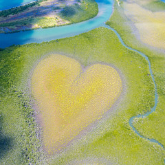 Heart of Voh, aerial view, formation of mangroves vegetation resembles a heart seen from above, New Caledonia, Micronesia, South Pacific Ocean. Heart of Earth. Earth day. Love life, save environment.