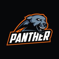 Panther sport logo