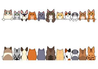 cats border set, front side and back side