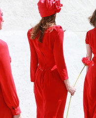 Rear view of woman in red dress during holiday march