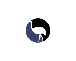 ostrich logo vector illustration template