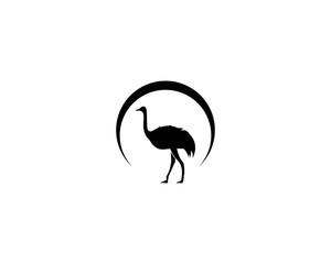 ostrich logo vector illustration template