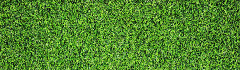 Green Grass Texture Background of Bright Natural Field with Green Grass, Empty Full Frame...