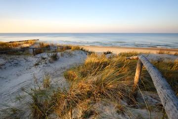 Obraz Wydmy nad Morzem Bałtyckim, wejście na plażę ,Dźwirzyno, Polska. - fototapety do salonu