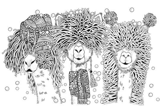 Llamas party. Happy new year. Coloring Book page for Adult and children in doodle style. A4 size. Black and white. Hand-drawn christmas alpacas.