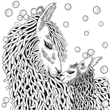 Llama. Mather and baby. Coloring Book page for Adult and children in doodle style. Black and white background. Hand-drawn winter lama.