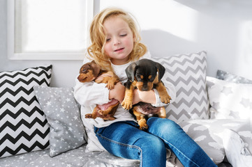The beautiful little girl embraces two little charming puppies of a dachshund