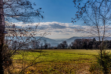 beautiful image of a meadow with green grass, trees and mountains background in a morning with haze with a blue sky and white clouds on a winter day in the Belgian Ardennes