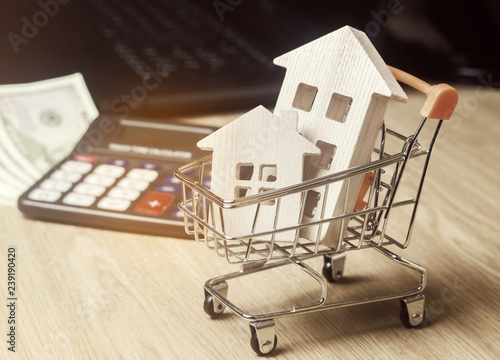 wooden houses in a supermarket trolley money and a calculator real