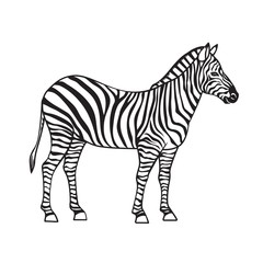 Zebra isolated black icon