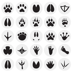 Animal foot prints icons set on circles background for graphic and web design, Modern simple vector sign. Internet concept. Trendy symbol for website design web button or mobile app