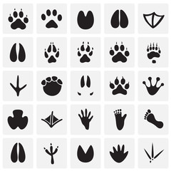 Animal foot prints icons set on squares background for graphic and web design, Modern simple vector sign. Internet concept. Trendy symbol for website design web button or mobile app