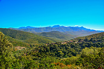 Corsican wilderness