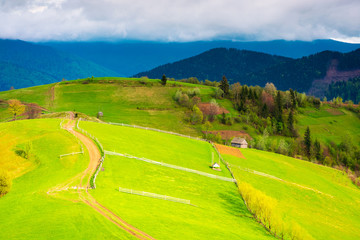 country road through rural rolling hills. beautiful springtime landscape in mountains
