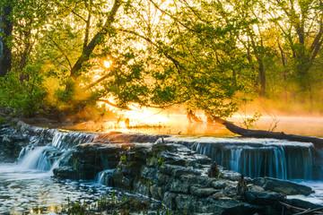 Sunrise at Beargrass Creek Wall mural