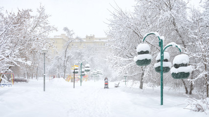 Panoramic view of a snowy urban park in winter, Moscow, Russia