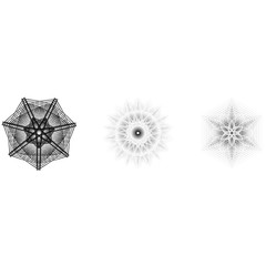 Holiday patterns of stars and flowers for gifts ground