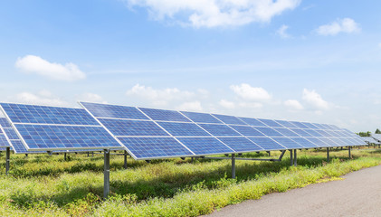 rows array of polycrystalline silicon solar cells or photovoltaic cells in solar power plant station turn up skyward absorb the sunlight from the sun  Fotobehang