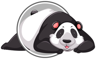 A panda sticker template
