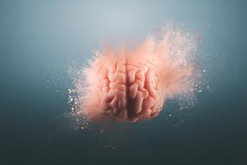 Fototapeta Human brain on a gray background