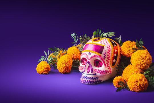 sugar skull in a purple background