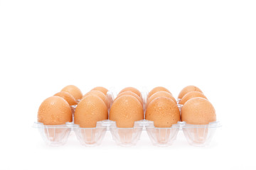 refrigerate eggs