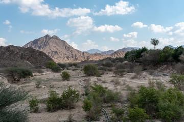United Arab Emirates mountains view form Wadi Al Qor to Buraq Dam highest place around 800 meters