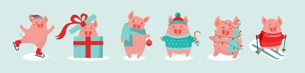 Collection of cute winter pigs. New 2019 year. Symbol of the year in the Chinese calendar. Vector cartoon isolated illustration. Year of yellow pig. - Vector