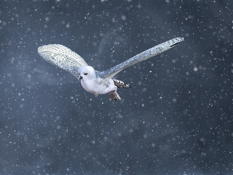 3D rendering of a flying snow owl in a winter storm.