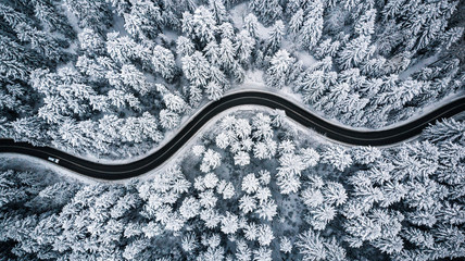 Driving in forest after snowfall, aerial drone view
