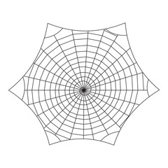 Spiderweb vector background. Halloween design. Cobweb decor isolated on the white.