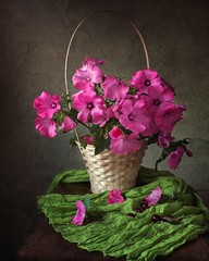 Still life with beautiful bouquet of pink flowers