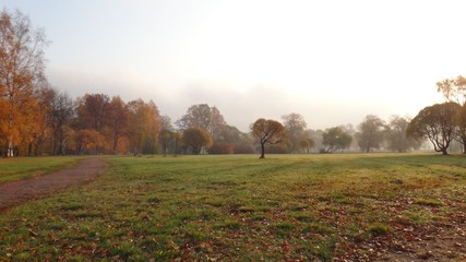 Autumn in Saint Petersburg parks in october 2018