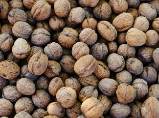 Top view of whole walnuts as background texture