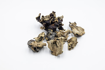 Black fungus in white background
