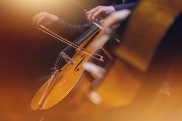 Fototapeta violoncelle musique classique orchestre archet corde instrument symphonique musicien concert obraz