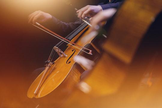 violoncelle musique classique orchestre archet corde instrument symphonique musicien concert