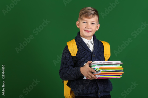 2d1e52d3b5 Cute little schoolboy with backpack and stationery on color background