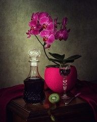 Still life with pink orchid flowers
