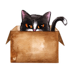 Cute kitten in carton box, cute cat. Brown paper container. Hand drawn watercolor drawing on white background. Aquarelle illustration for children cover, design, poster, happy birthday card.