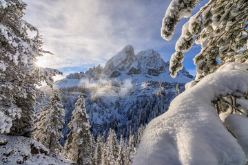 The sun illuminates the snowy trees and Sass De Putia in the background, Passo Delle Erbe, Funes Valley, South Tyrol, Italy, Europe
