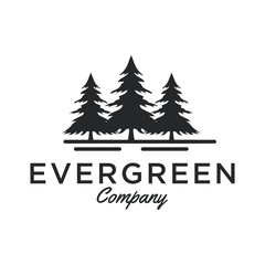 Evergreen / Pine tree Logo design inspiration - Vector