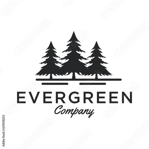 Evergreen Pine Tree Logo Design Inspiration Vector Stock Image