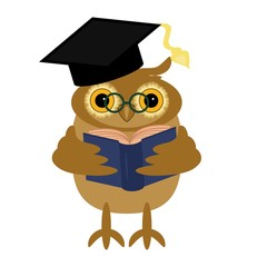 nice owl with book on white background