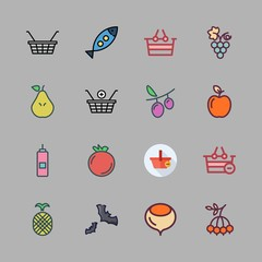 fruit icon set. vector set about vinegar, apple, shopping basket and pear icons set.