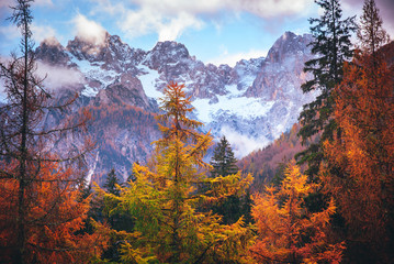Late autumn in big Alps mountains. Adventure photo