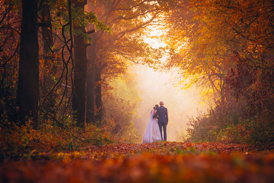 Bride and groom in colorful autumn forest