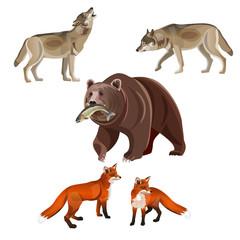 Predatory beasts vector